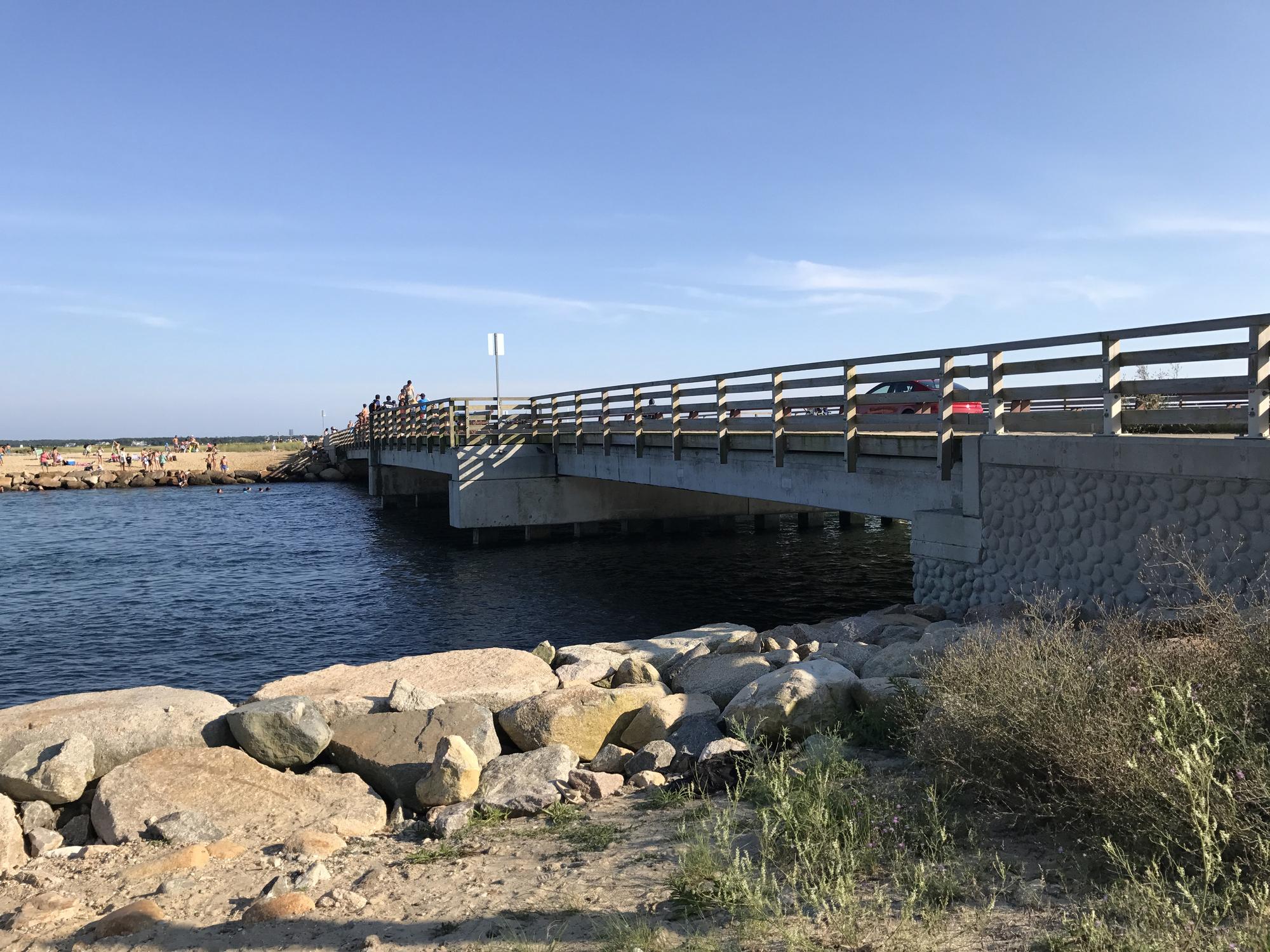 Bridge from Jaws